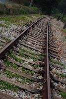 Down that track by jasmine111196