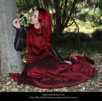 Rose Red 2 by faestock