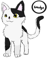 Warrior cats - Smudge by AuraMasterLucario
