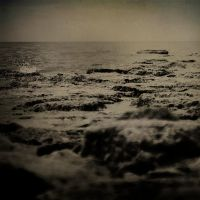 on deserted shore VII by carrex