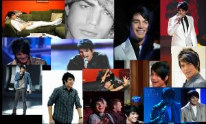 Adam Collage 2 by ForTheLoveOfAdam