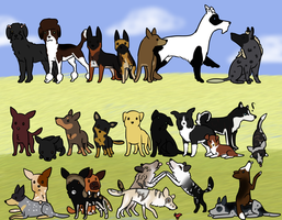 All of BCK's dogs by Alcemistnv