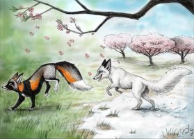 Winter to Spring Contest by silvercrossfox