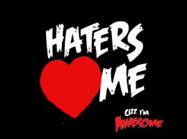 The miz haters love me by AyeshMantha