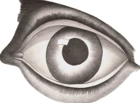 Eye(you can use it as a sticker) by Insanechan