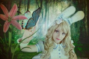 Alice and the Butterfly by artmaniabychristine
