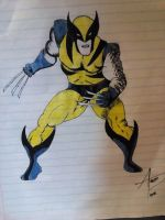 Classic Wolverine by augustomp96