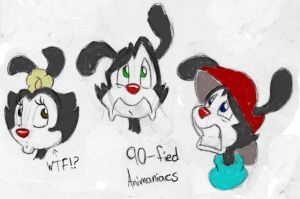 Animaniacs WTF by Rannva