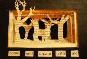 Come and Dream With Me book frame by melpk