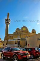 mosque and cars in Dubai by amirajuli