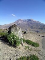 Mt. St. Helens by cloudwatcher1