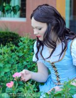 Belle From Once Upon a Time - 2 by Rebari