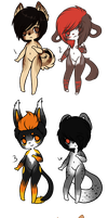 adopts by v-oi-d