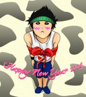 Happy New Year 2009 by lottovvv