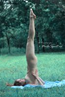 Nude Yoga in wood 4 by FotoKirchos
