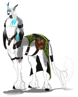 Centaur Boy by Sunkaro