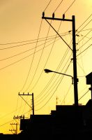 Wires by gonnaday
