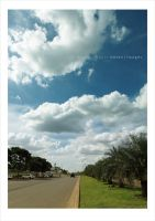 road to prediction by bosen