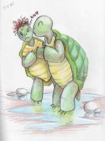 The tortoise and his hair colored sketch by NireLeetsac