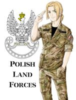 APH- Polish Land Forces by Mirogniewa