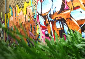 Grass and Graffiti by RaCzarina