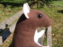 rattie plushie close up by Aycelcus