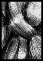 Knot of Hair by philippeL