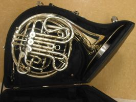 French Horn 1 by magenta-stock