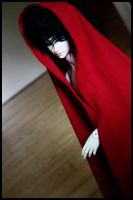 Little Red Riding Hood .1 by Y-n-Y