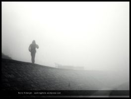 Walk in the fog by Ph1at1ine