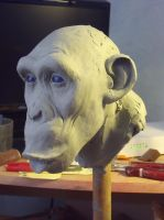 W.I.P chimpanzee by marjoriechantre