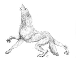 Half Howl by fencing-woman