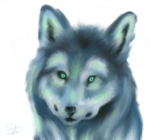 Wolf Colored by QwertyNerd