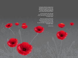 In Flanders Fields by pixelfish