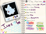PKMNation: IceCube the Bergmite App by OtaPotato