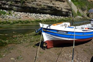 The Boat of Staithes by McFit