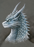 Granite Dragon Portrait by DragonosX