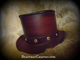 Steampunk Top hat for sister by The-Beast-Man