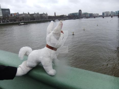 The Thames with Bolt... by BOLTsTrueNo1FanEVER