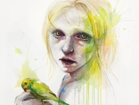 Agapornis by agnes-cecile