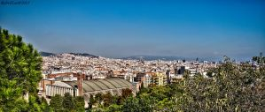 View over Barcelona by forgottenson1
