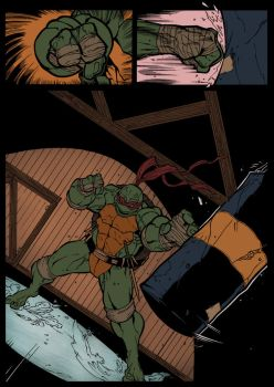 TMNT 1 Flats by drucpec