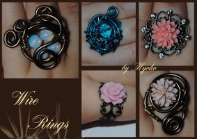 Wire Rings by Hyo-pon