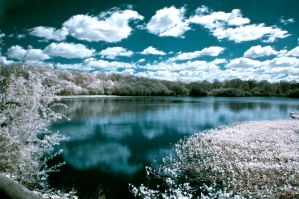The Great Pond : Infrared by fizthornton