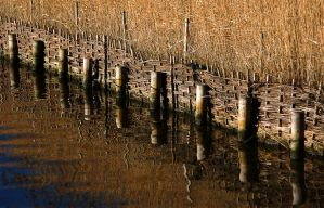 posts and wicker by awjay
