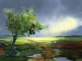 After the Rain by noahbradley