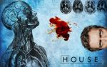 House M.D. by trebory6