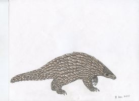 Pangolin by Up-Your-Arsenal-N90