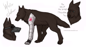Bucky Barnes by FourDirtyPaws