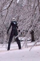 "Jack ""Frost"" Skellington by Ex-Shadow"
